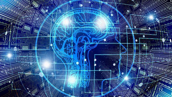 AI principles network brain